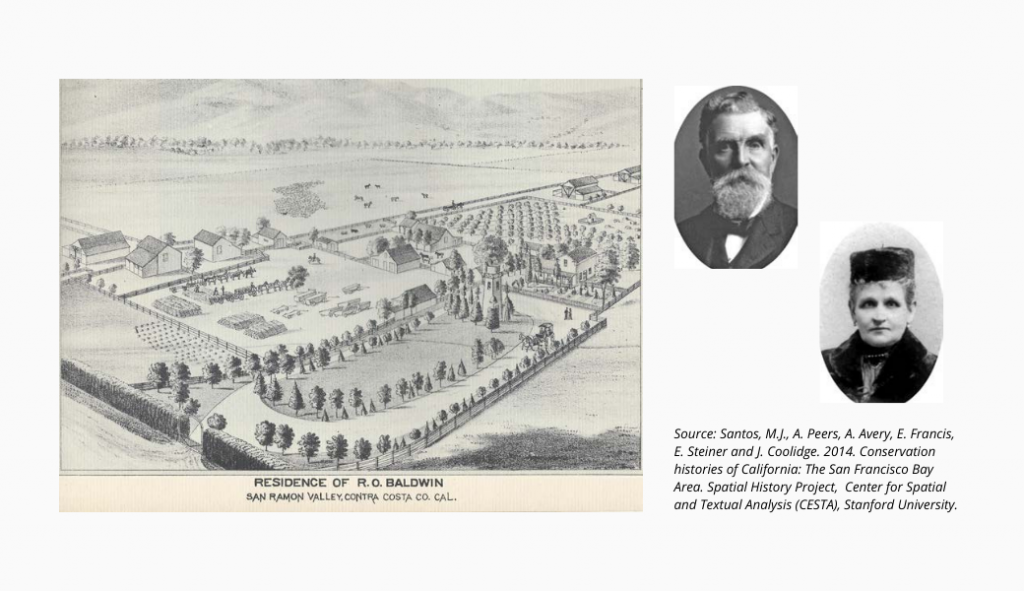 Baldwin estate (1)